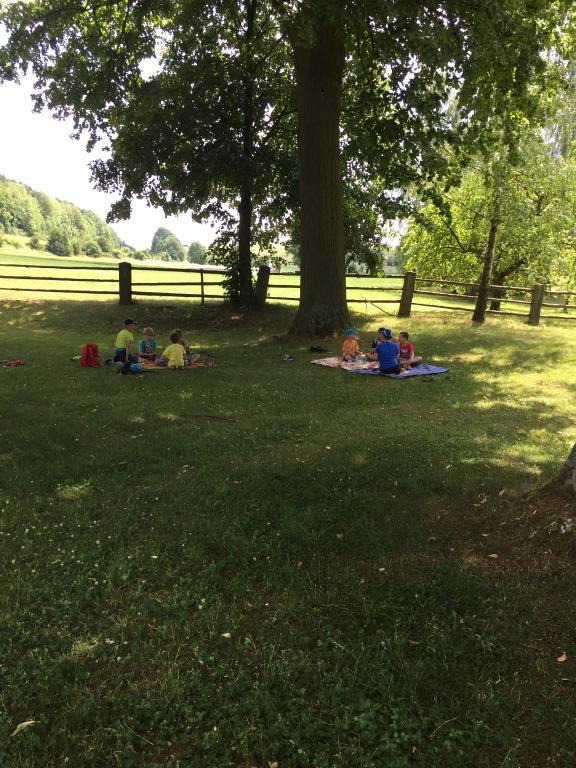 Letní piknik ve ŠD